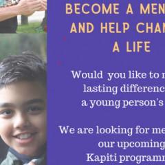 Mentor Volunteer Role